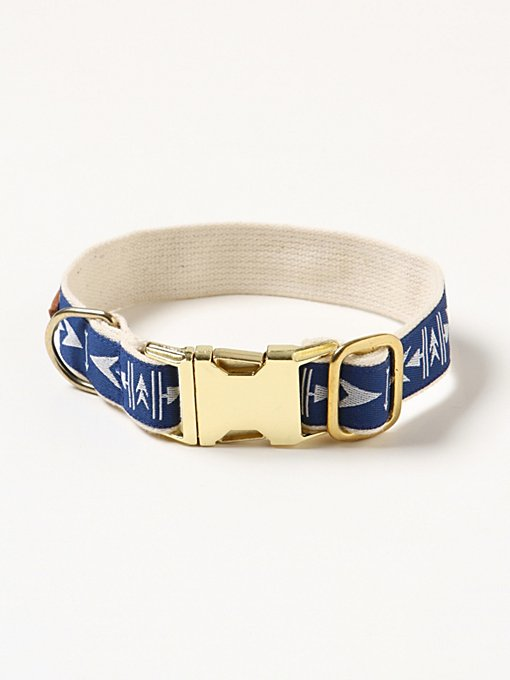Arrowhead Dog Collar in fp-pet-project